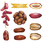 Dates, hand-painted watercolor set