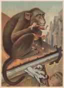 Gulliver in the land Brobdingnag - a monkey kidnapped Gulliver