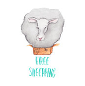free shipping sheep out of box watercolor illustration