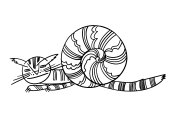 Snail funny cartoon cat illustration with the image of a fantastic animal funny