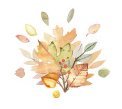 Watercolor hand-painted autumn leaves bouquet illustration