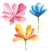 Hand painted watercolor flowers.