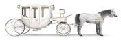 White horse drawn carriage