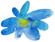 Hand painted watercolor flower.