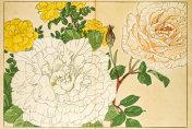 Roses japanese woodblock print