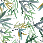 Bamboo watercolor illustration
