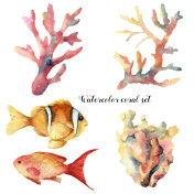 Watercolor set with coral and fish. Hand painted underwater branches and reef fish isolated on white background. Tropical sea life illustration. For design, print or background.