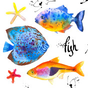 Set of tropical marine fish. Watercolor illustration with hand drawn aquarium exotic  on white backgroun