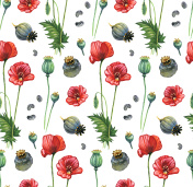 Poppy hand-painted pattern