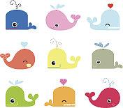 Cute Whale Characters