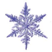 Snowflake Isolated on White background.