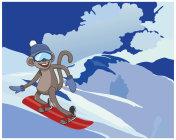 monkey on a skateboard