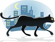 Black cat walking down the street at night