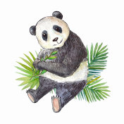 Watercolor panda with green leaves.