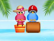 birds go on vacation