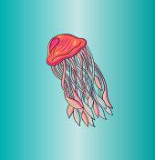 Octopus Jelly Fish Cartoon Illustration