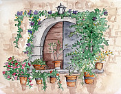 Window with potted flowers