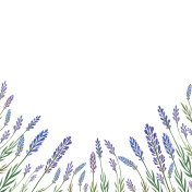 Watercolor hand painted flower card with lavender.