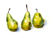 Green Pears - Original watercolour painting