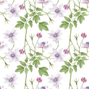 Watercolor seamless pattern False Anemone