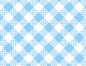 JPG Woven Blue Gingham