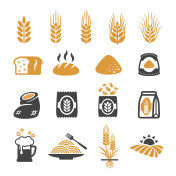 wheat icon