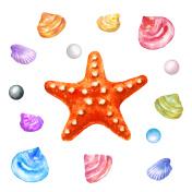 Red Starfish and Sea Shells. Watercolor illustration