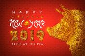 Chinese New Year 2019. Zodiac Pig.