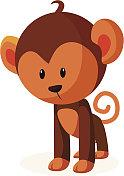 vector icon monkey