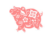 Pink pig isolated on white. Symbol of 2019 year.