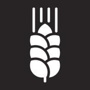Wheat ear icon, vector illustration
