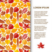 Flat poster or banner template with autumn leaves