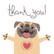 Cute dog says thank you. Pug with heart full of gratitude