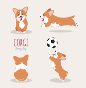 Cute Welsh Corgi Pembroke cartoon set.