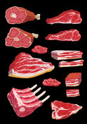 A set of illustrations of meat products