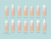 Different shapes of nails. Professional female manicure. Nails trends. Vector illustration