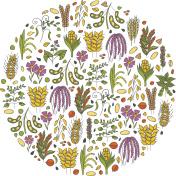 Vector hand drawn porridge cereals background