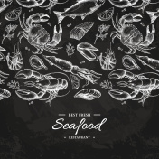 Seafood hand drawn vector illustration. Crab, lobster, shrimp, oyster, mussel, caviar and squid