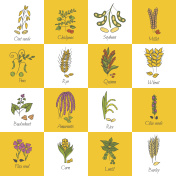 Vector hand drawn porridge cereals icons