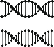 DNA simple black symbols