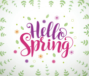 Hello spring text typography vector banner design in white background