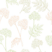Valerian graphic color seamless pattern sketch illustration vector