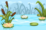 Illustration of a swamp with water lilies and reeds, background