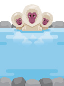 Snow Monkey Relaxing In Hot Spring Frame