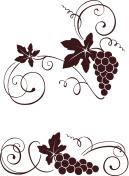 Vine with swirls