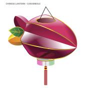 Chinese Mid-Autumn Festival Lantern - Carambola