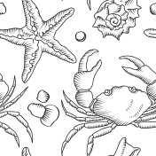 Seamless pattern with starfish and crab