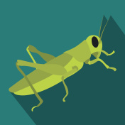 Locusts icon in flat style