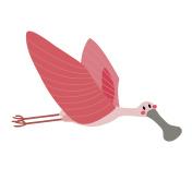 Flying Roseate Spoonbill bird animal cartoon character vector illustration.