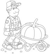 Gardener and Pumpkin